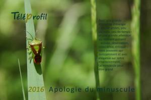 Apologie du minuscule